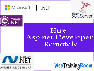 hire remote asp.net developer